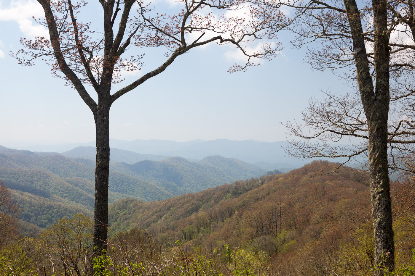 9740smokymountains