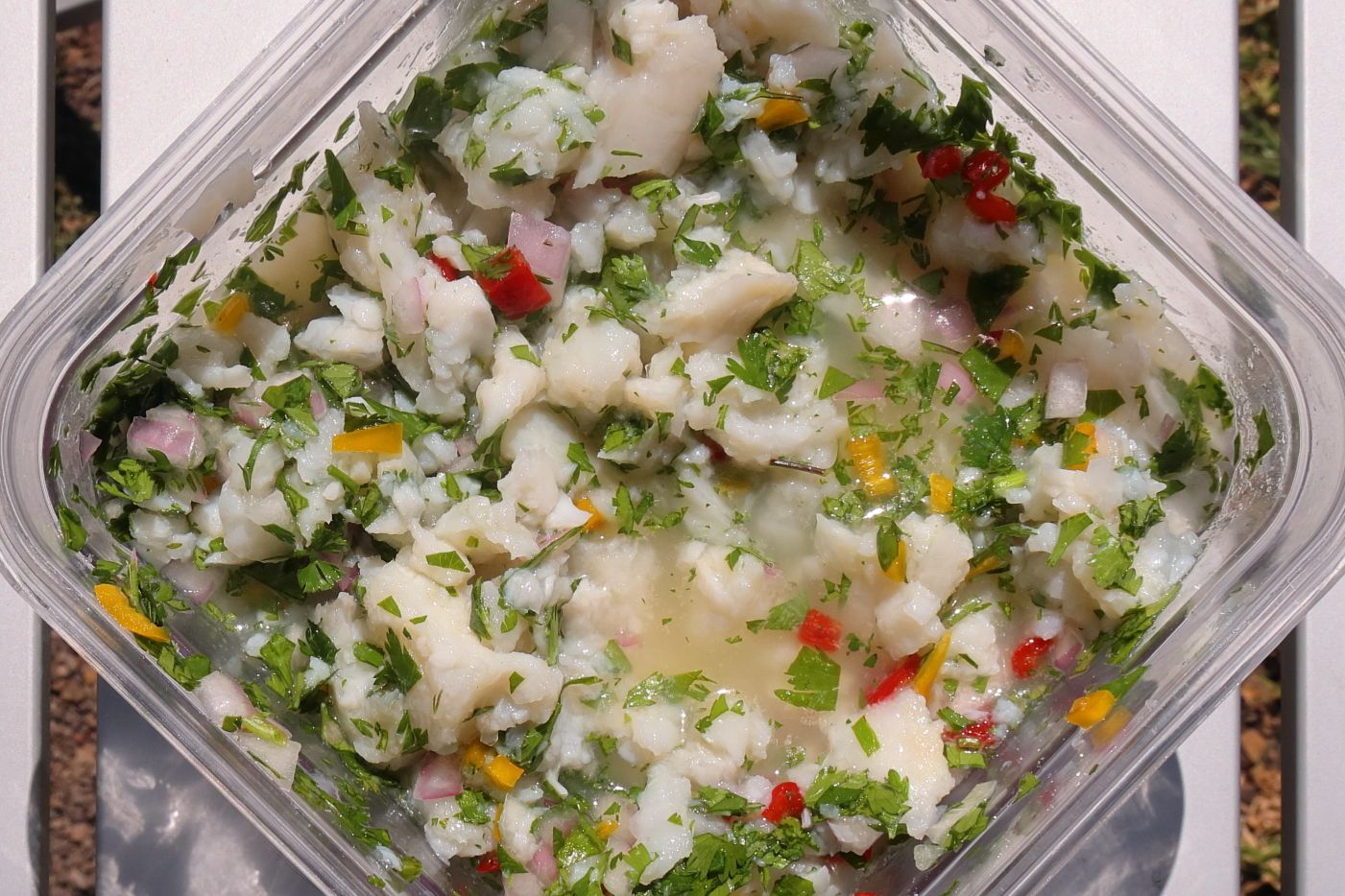 Ceviche – en opskrift